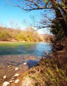 Cetina river in Spring