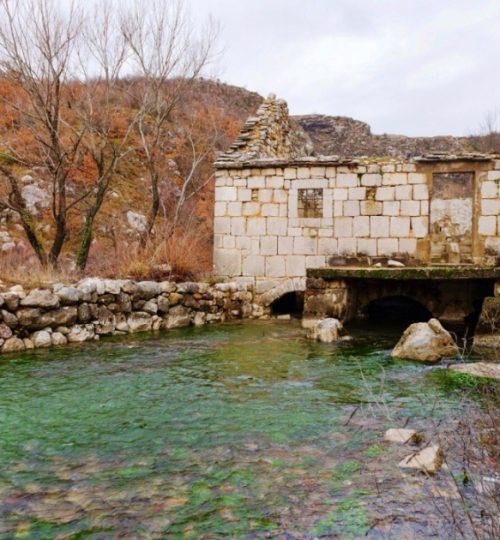 Rumin mills